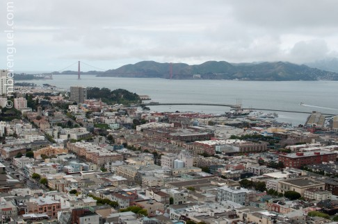SF cityscape