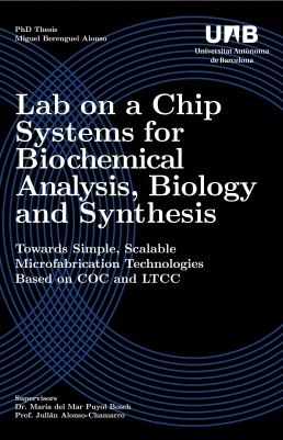 mb_thesis_cover_2.jpg